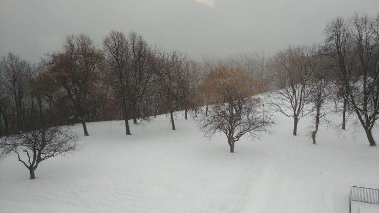 روزهای کوتاه، گرفتگی و ابری بودن آسمان، سرمای زمستانی مونترال و کمتر شدن فعالیتها در فضای باز مسیر خطرناکی به سمت اختلال عاطفی فصلی است. / Photo: Shabnam amin . Medad