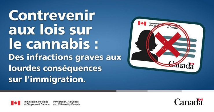رانندگی تحت تاثیر ماریجوانا میتواند به قیمت اخراج تازهمهاجران از کانادا تمام شود