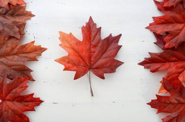 برگ درخت افرا، نماد پرچم کاناداست